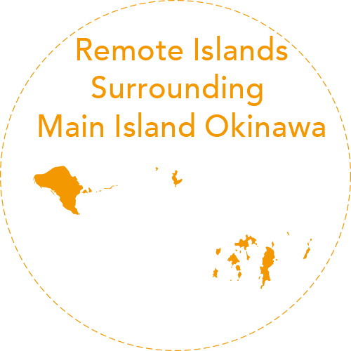 A resort island close enough<br>for a day trip from Naha